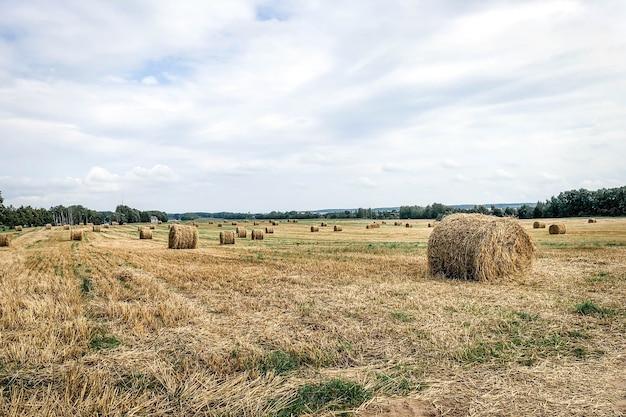 Стог сена на летнем поле с голубым небом.