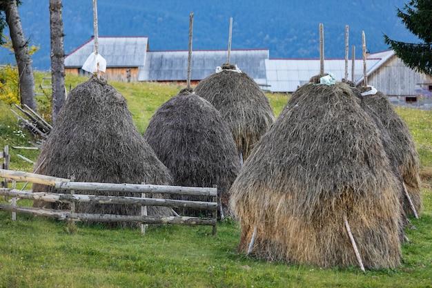 グリーンフィールドの干し草