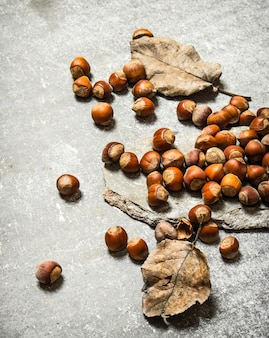 乾燥した葉を持つヘーゼルナッツ。石のテーブルの上。