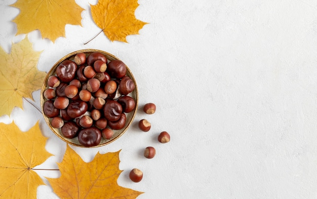 Hazelnuts and chestnuts in plate on gray background and yellow leaves flat lay with copy space