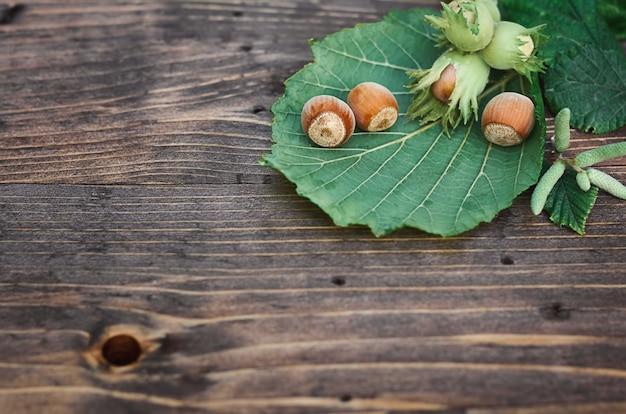 나무 표면에 녹색 잎이 있는 헤이즐넛