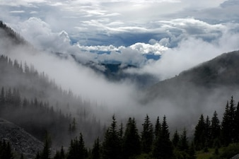 Hazy and cloudy landscape