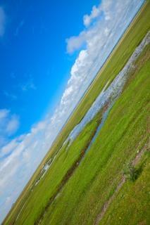 ノルマンディー牧草でhdrフィールド