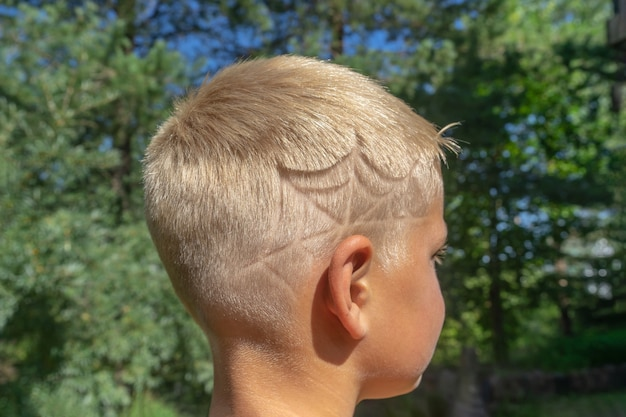 The head of a boy with an author's haircut, a spider web over the ear.