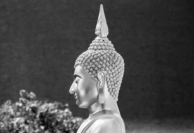 Head of buddha statue monochrome background