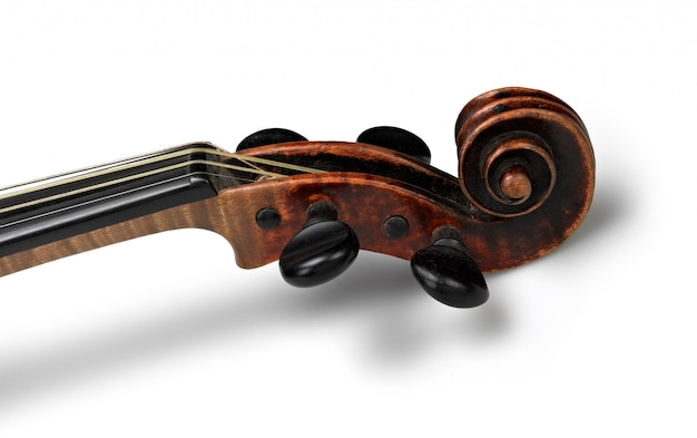 Head of classical violin on white