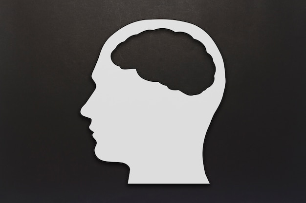 Head made of white cardboard with a brain on a black background. copy space. flat lay, top view.