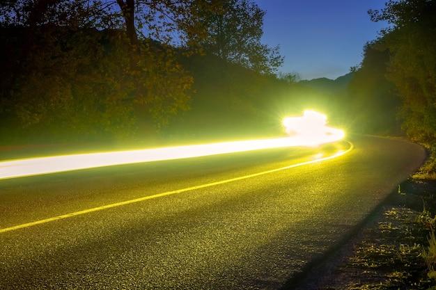 Фары освещают пустую дорогу в летнем ночном лесу. длинные извилистые тропы
