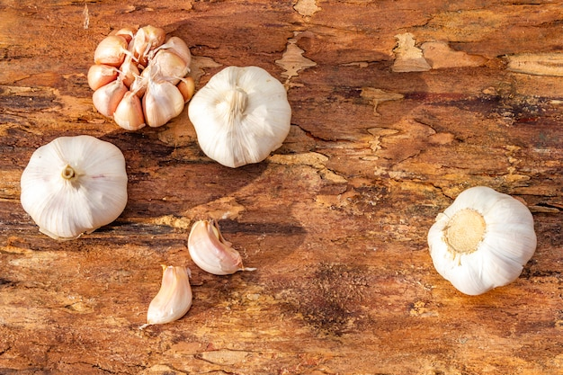 Heads of garlic on a wooden bark surface. ingredient for cooking.