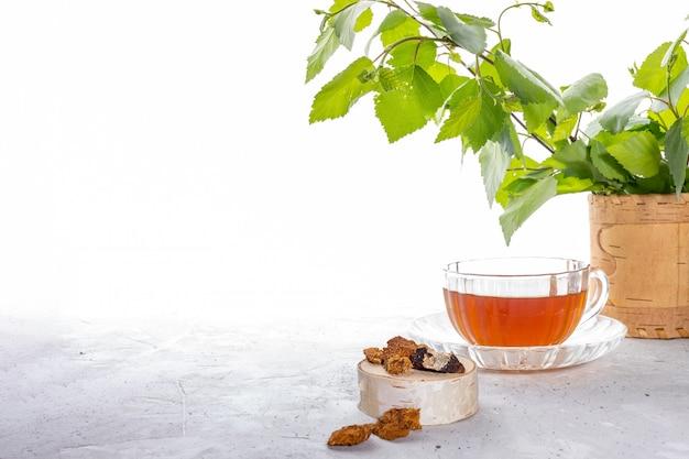 コピースペースと白い背景の上のガラスのコップと緑の小枝でバーチキノコチャガの注入を癒します。