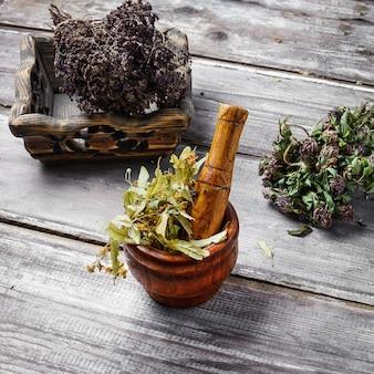 Healing medicinal plants