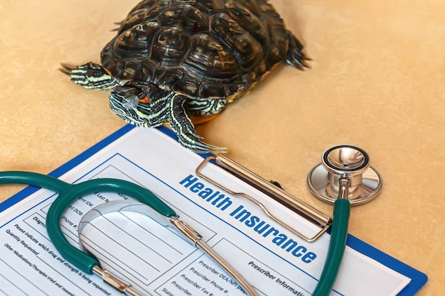 Health insurance with insurance claim form stethoscope and redeared turtle