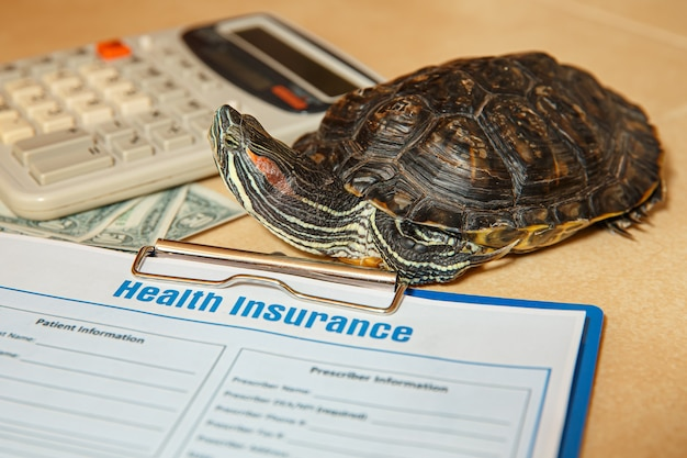 Health insurance with insurance claim and redeared turtle health insurance concept