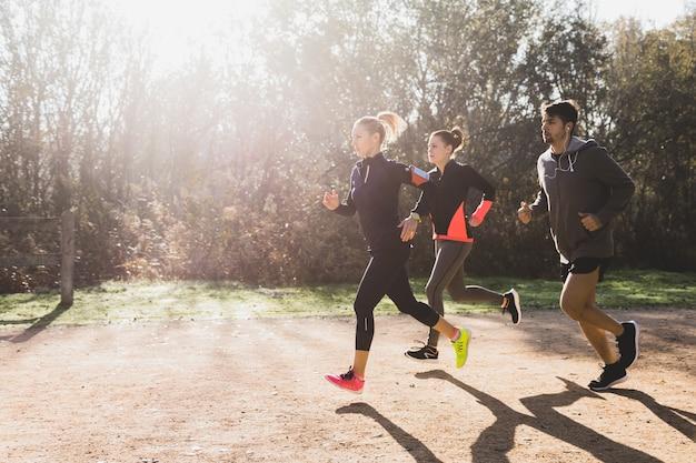 Здоровые спортсмены, работающие в солнечный день