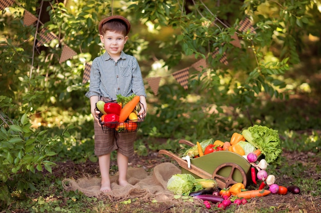 건강 한 먹는 개념. 작은 정원사는 작은 채소를 수집합니다. 제품 배달 ...