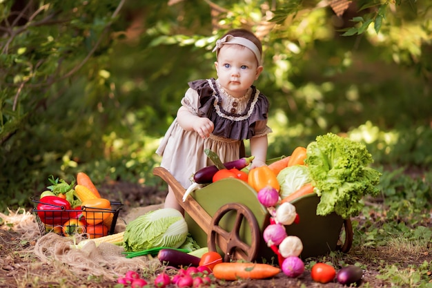 Healthy eating concept. little gardener girl collects a crop of vegetables. delivery of products