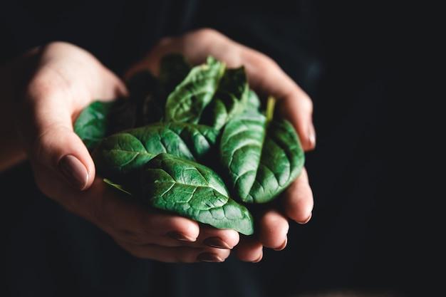健康的な食事、ダイエット、ベジタリアン料理、人々の概念-ほうれん草を持っている女性の手のクローズアップ