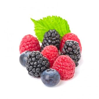 健康食品ベリー類