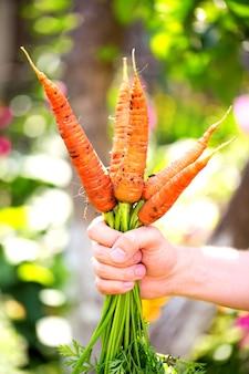Здоровая пища. фермер с морковкой.