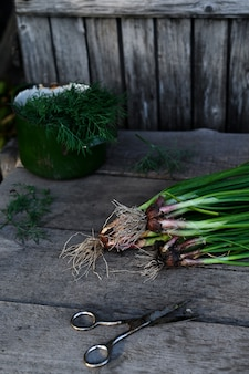 Healthy food from garden on old wooden background