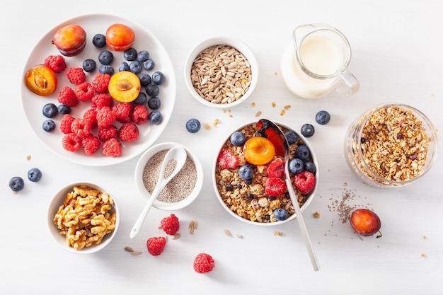 Healthy granola for breakfast with berry fruit nut, vegan milk