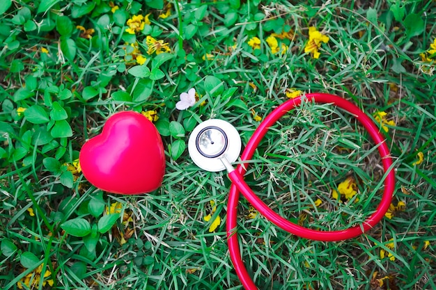 Healthy, healthcare concept. red stethoscope with red heart on green grass background.