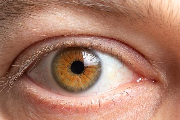 Здоровый человеческий глаз крупным планом
