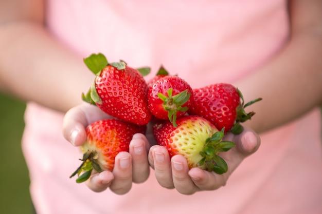健康的な子供向け食品。いちごの子供。子供の手に新鮮なイチゴ。