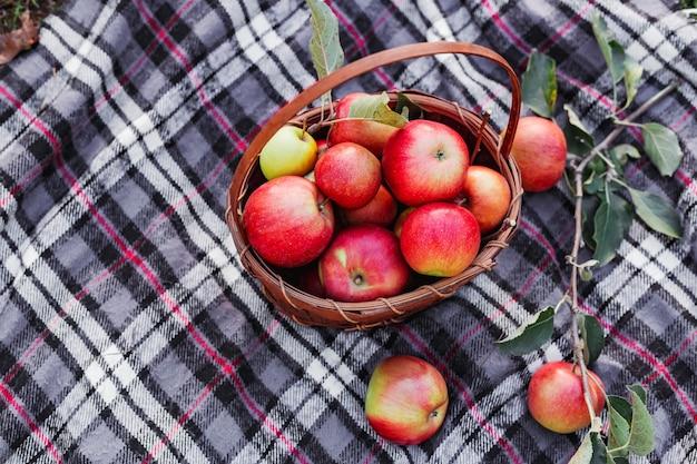 かごの中の健康的な有機赤熟したリンゴ。田舎の庭で秋。自然の中で新鮮なリンゴ。