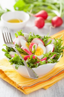 Healthy radish salad with egg and green leaves