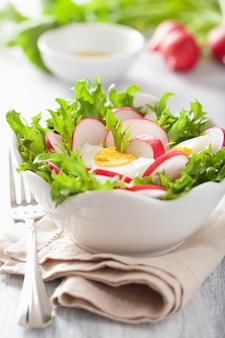 Healthy salad with egg radish and green leaves