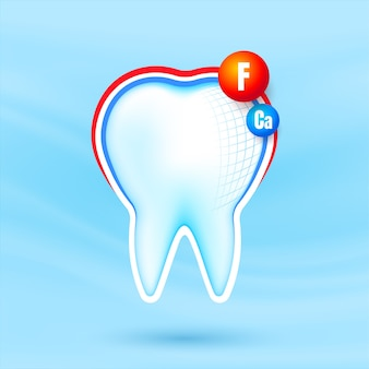 Healthy strong tooth with calcium and fluor sheild. white teeth being protected. dental care.