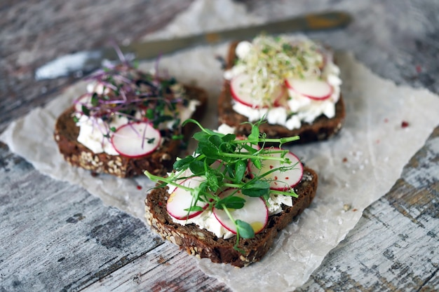 Healthy toast with microgreens and radishes
