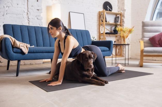 元気。犬と一緒にヨガの練習をしている、封鎖中に自宅で運動している若い女性。ストレッチ、練習の美しい女性。ウェルネス、ウェルビーイング、ヘルスケア、メンタルヘルス、ライフスタイルの概念。