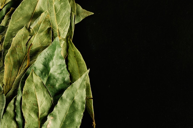 Heap of bay leaves