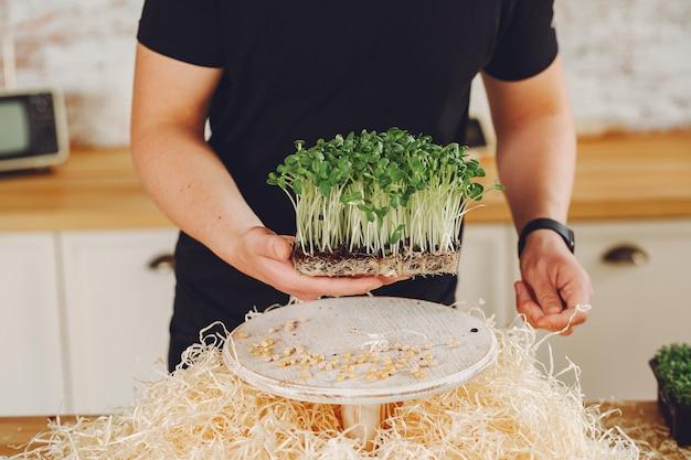 Mucchio di micro barbabietole verdi sul tavolo