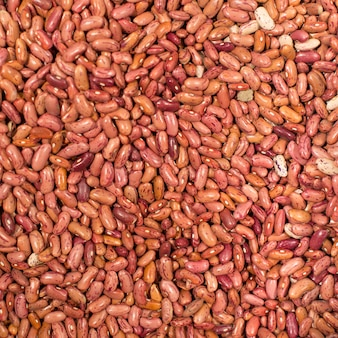 Heap of dried beans