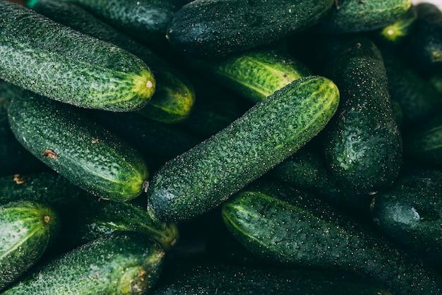 Heap of fresh cucumbers