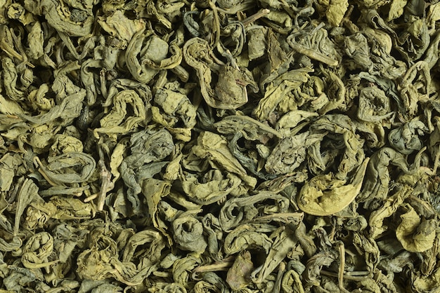Heap of green tea dried leaves background or texture