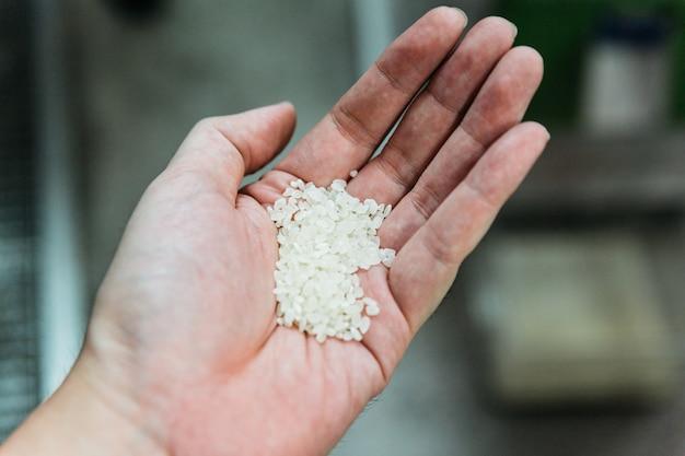 Куча японского сырого короткозернистого риса, выращенного (koshihikari) после полировки.