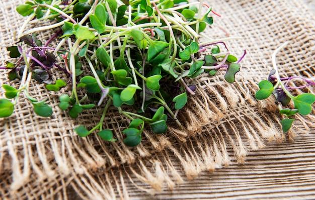 Куча редиса микро зелени на старых деревянных фоне концепция здорового питания