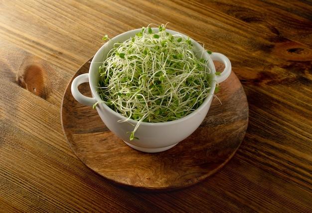 나무 테이블에 흰색 레스토랑 그릇에 레드 클로버 콩나물, 루체른, 무 콩나물의 힙. 원시 다이어트 식품에 대한 발아 야채 씨앗, 마이크로 녹색 건강한 식생활 개념