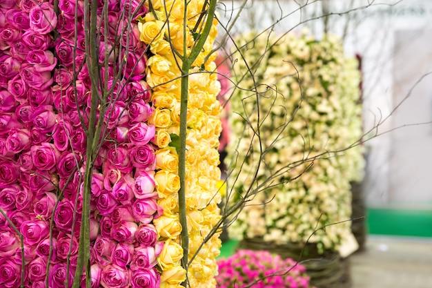 Куча желтых и розовых роз на кусте крупным планом