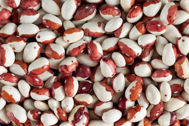 白と赤のマメ科植物の豆のクローズアップのヒープ