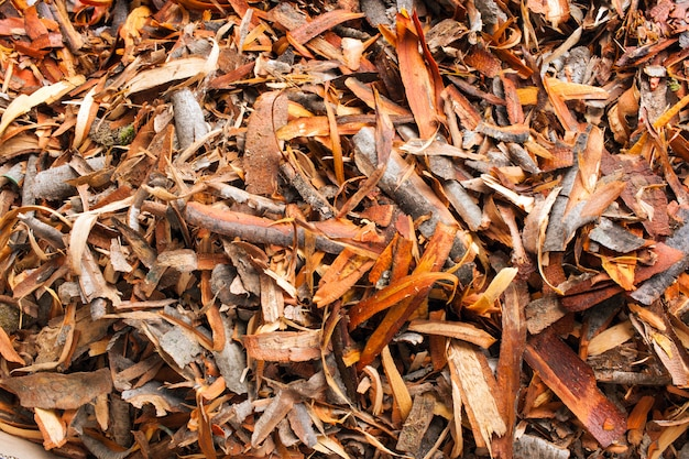 A heap of pieces of bark of alder