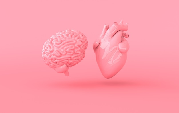 Heart and brain 3d rendering emotions and rational thinking conflict concept