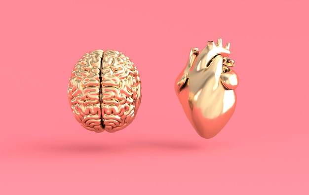 Heart and brain 3d rendering
