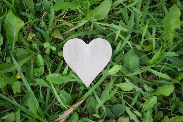 푸른 잔디 배경에 심장 장식 수제 모양