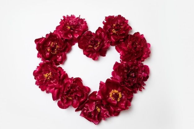 Heart frame made of red peony flowers with copy space for text on white
