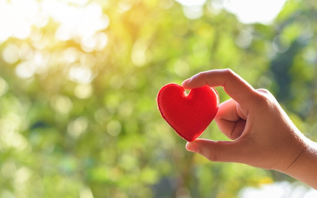Heart in hand for philanthropy concept - woman holding red heart in hands for valentines day or donate help give love take care